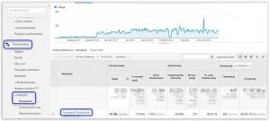 Interfejs Google Analytics dotyczący skuteczności kampanii produktowej