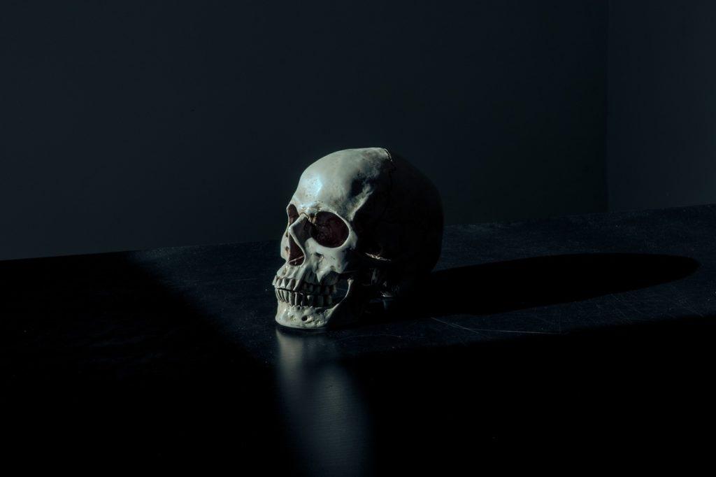 AdWords czy pozycjonowanie czaszka