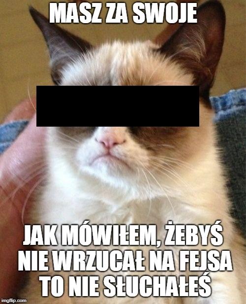 prawa kotów w internecie