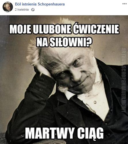 Arthur Schopenhauer mem